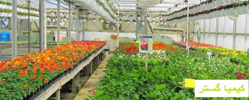 فروش خاک گلخانه